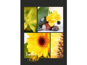 Fotoalbum 9x13/100foto MM-35100(C) Color art gerbera