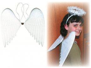 Andělská křídla plastová 36 cm 5853 - 6 POSLEDNÍ KUSY -