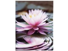 Fotoalbum 10x15/100foto MM-46100(PL) One color Růžový - 2 POSLEDNÍ KUSY -