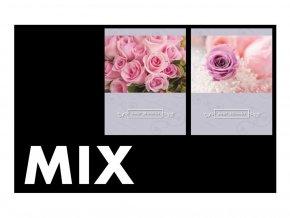 FOTOALBUM P2-6836(PL) MIX