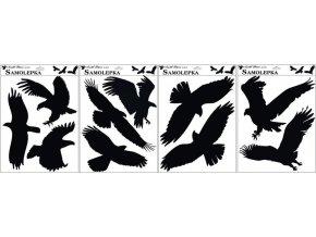 Samolepka siluety ptáci 429, 42x30cm