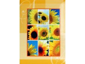 Fotoalbum 9x13/200foto B-35200S Bloom žlutý
