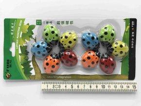 Magnet broučci 10ks 3,5cm
