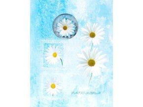 Fotoalbum 9x13/100foto MM-35100(CA) Window flowers modrý