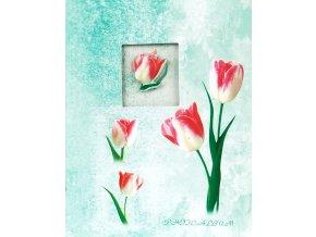 Fotoalbum 9x13/100foto MM-35100(CA) Window flowers zelený - 2 POSLEDNÍ KUSY -