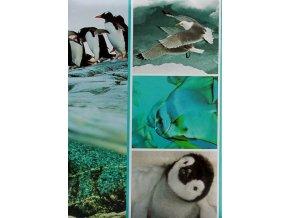 Fotoalbum 9x13/200foto B-35200S Fauna 1 tučnák