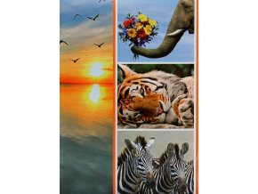 Fotoalbum 9x13/200foto B-35200S Fauna 2 tygr