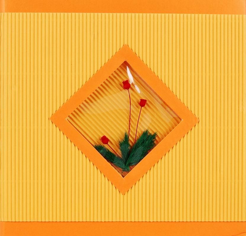Fotoalbum 10x15/200foto BT-46200 Assort oranžový