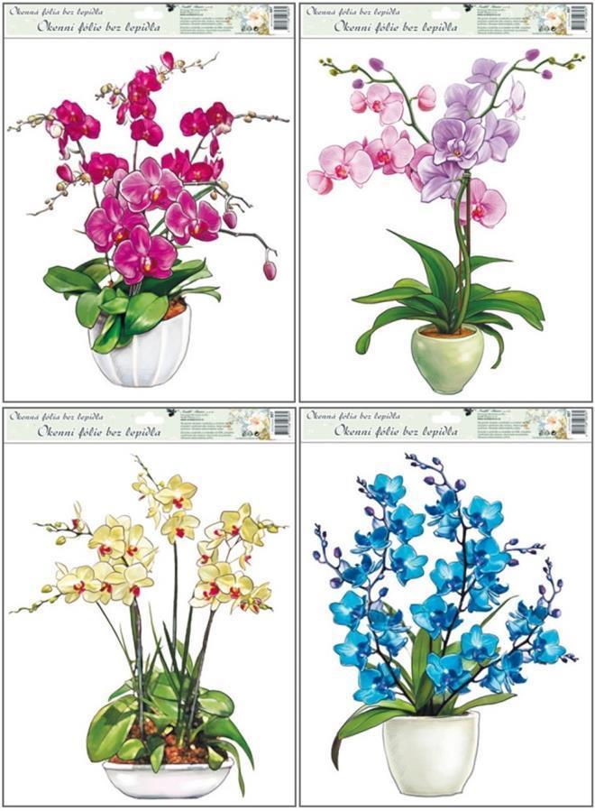 Fólie na okna orchideje 887, 42x30cm Typ: 1