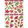 Fólie na okna barevné podzimní listy 889, 30x20cm