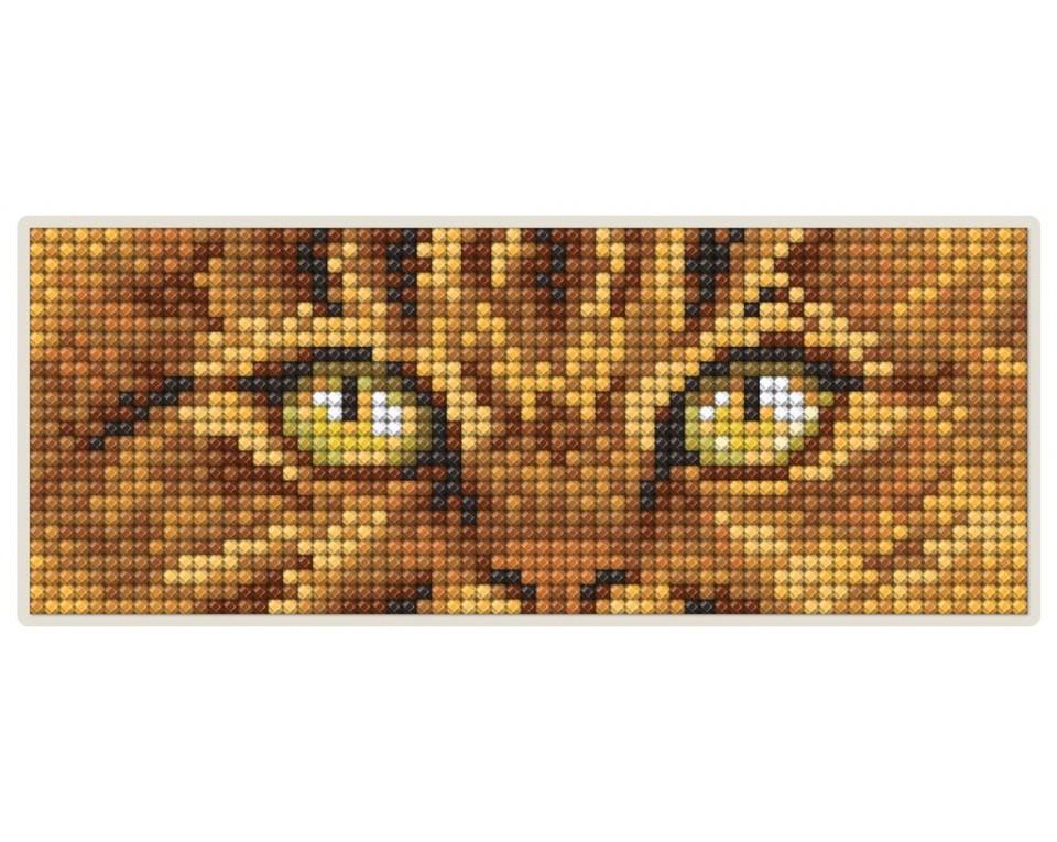Diamantové malování 17x6,8cm, magnet - OČI KOČKY