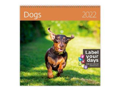 Nástěnný kalendář Dogs