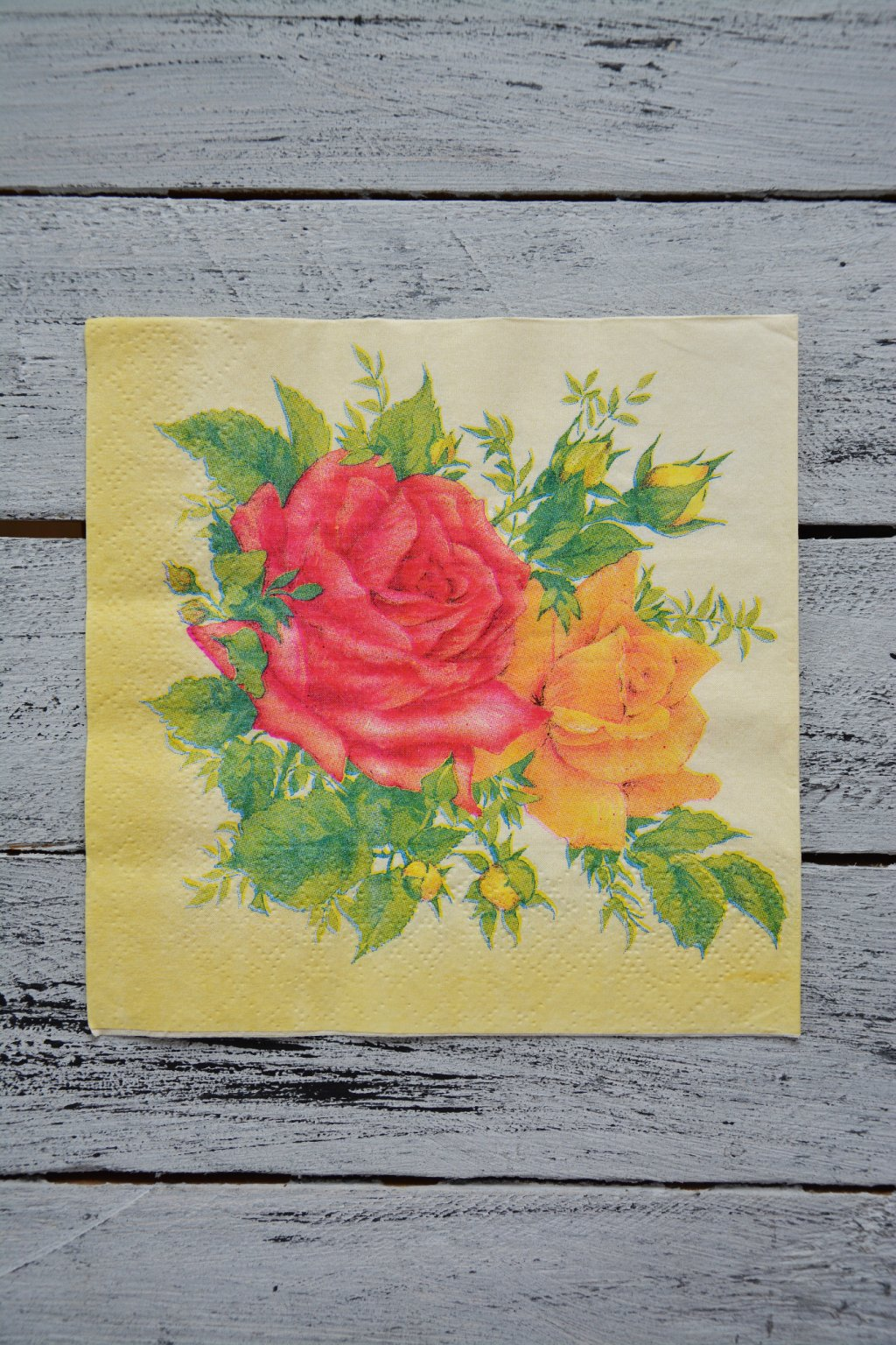 Oranžovo-růžové růže