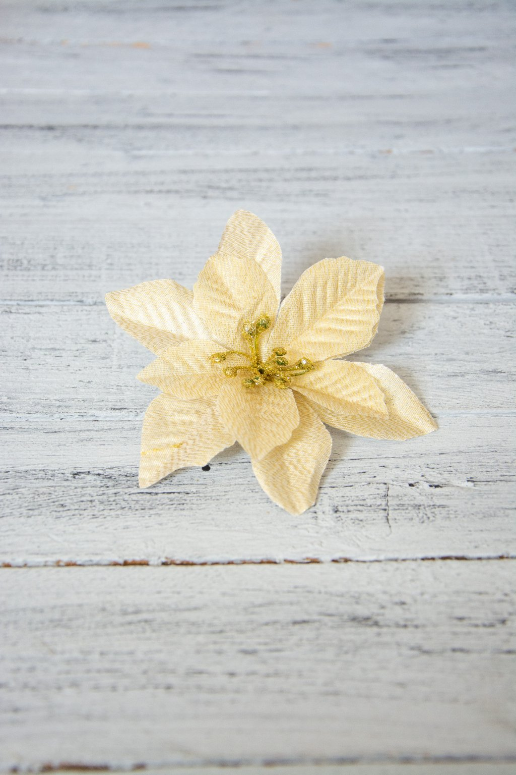 Vánoční hvězda s lurexovým třpytem.  Průměr květu 14 cm.