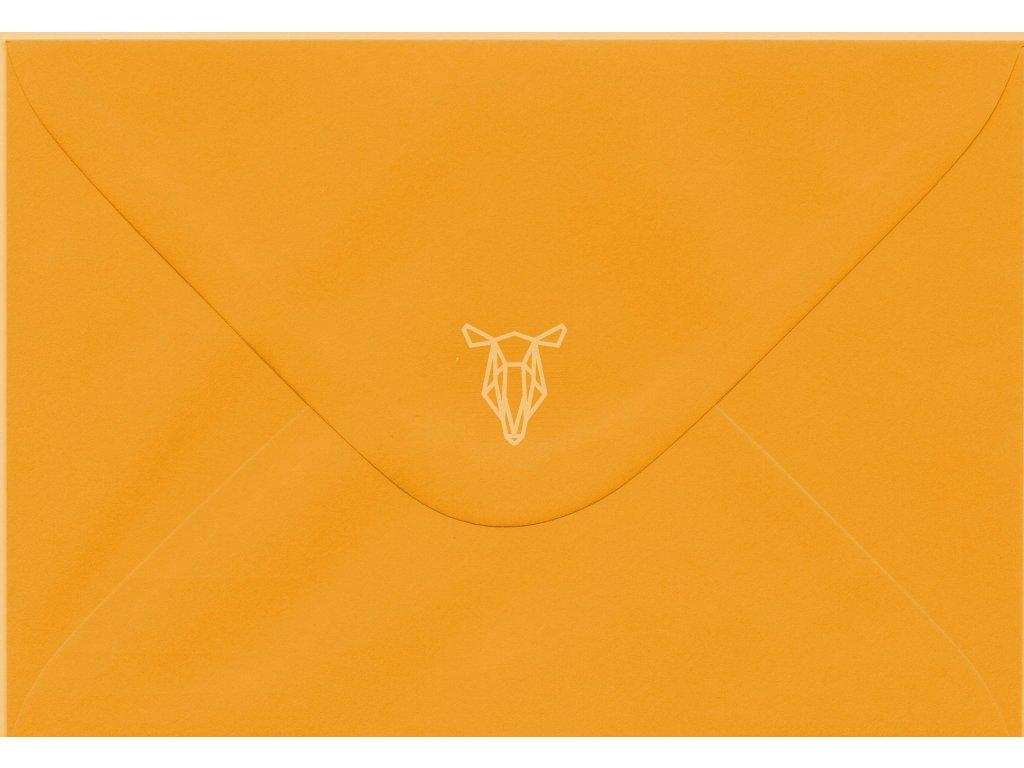 578 obalka svetle oranzova c6