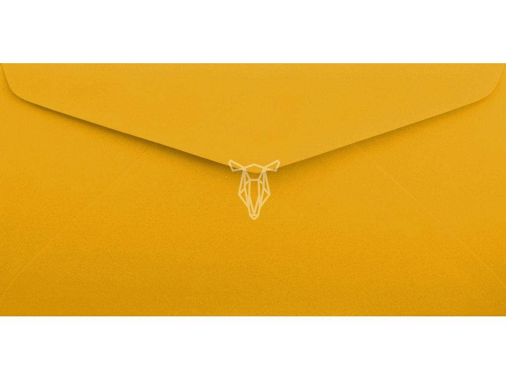 599 obalka svetle oranzova dl