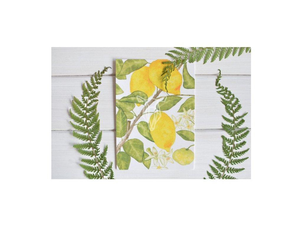 12857 3 pohlednice citrony