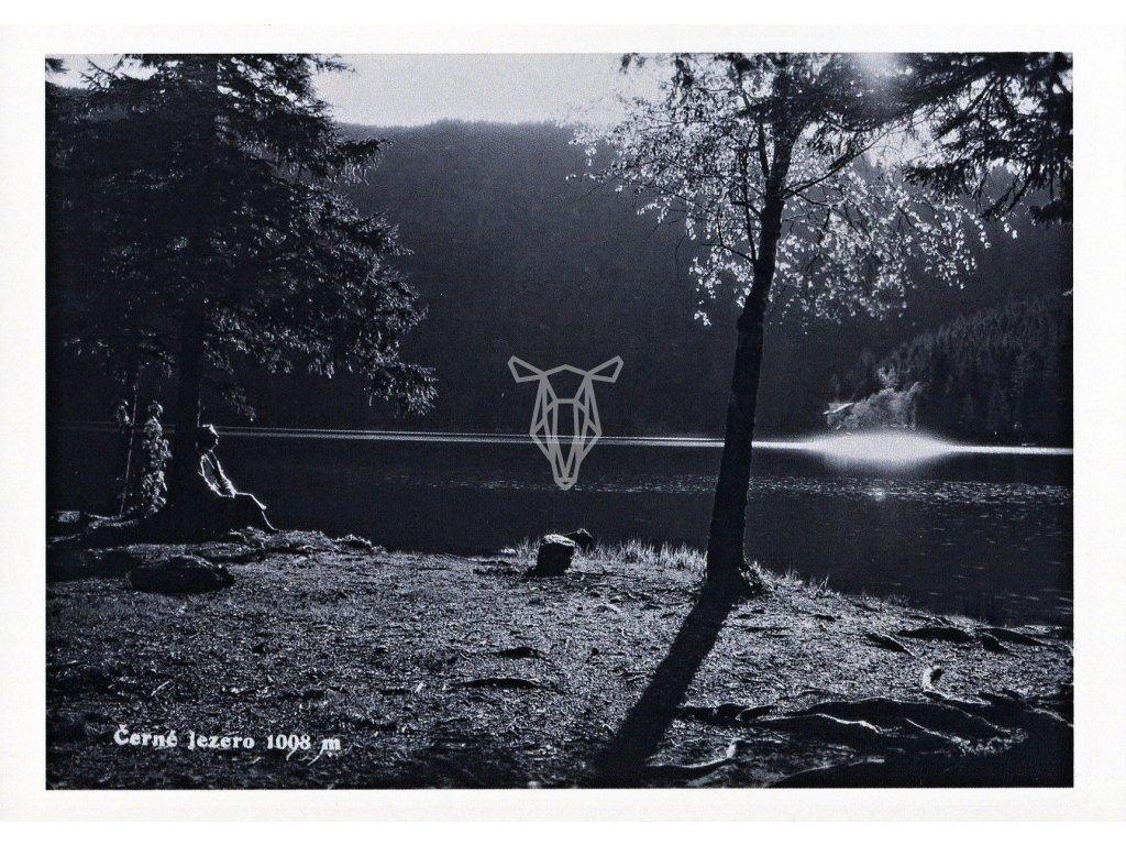 4628 2 pohlednice cerne jezero sumava