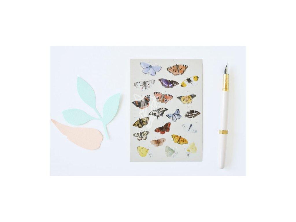 4655 2 pohlednice motyli(1)