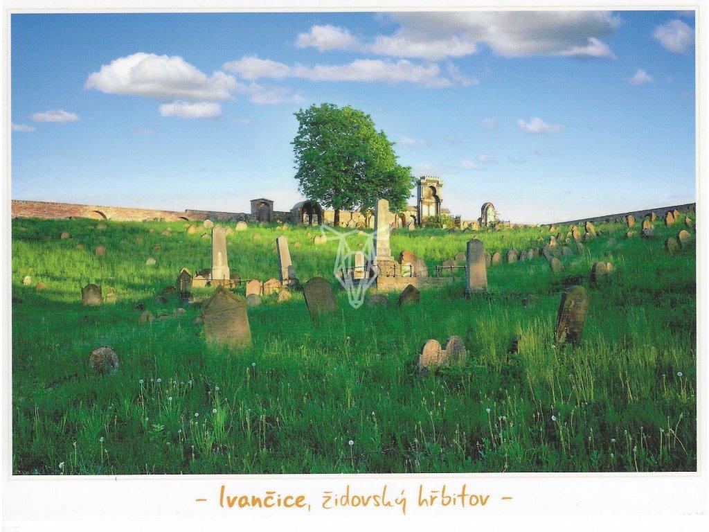 13319 3 pohlednice ivancice zidovsky hrbitov 12 5 x 17 cm