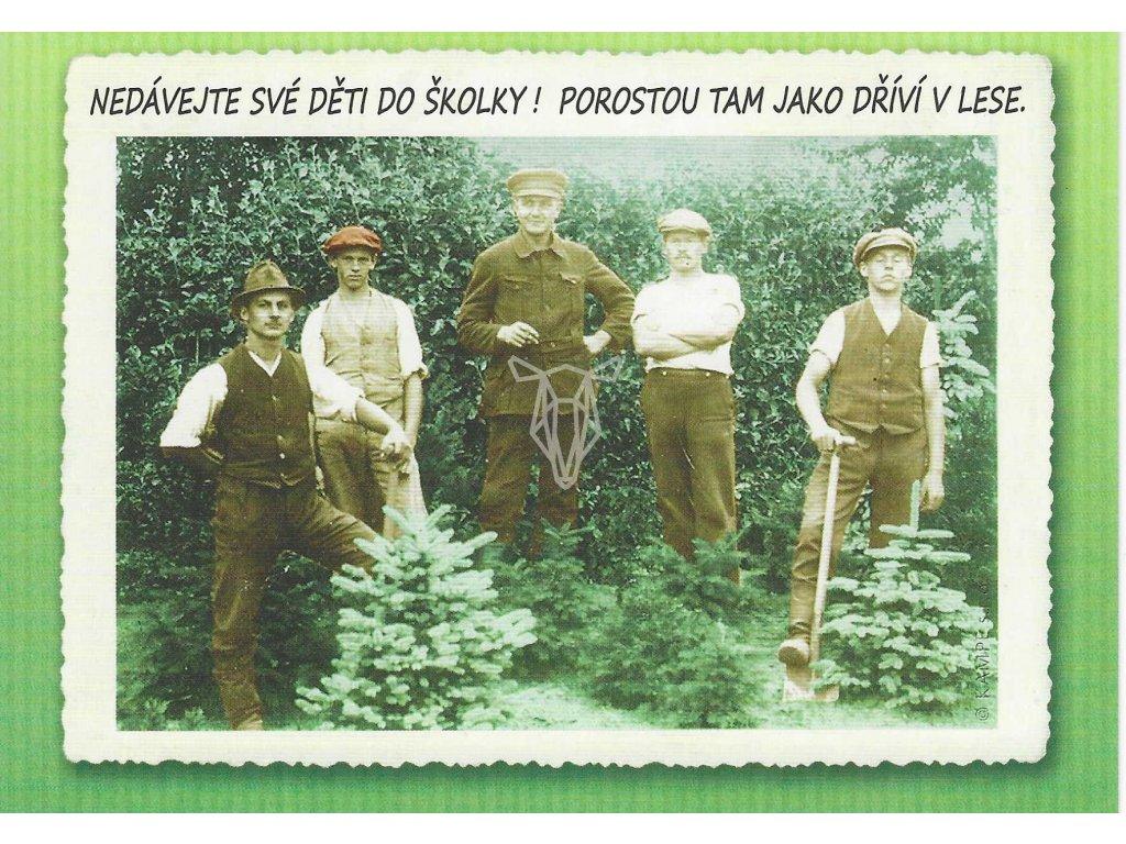 14390 2 pohlednice jako drivi v lese