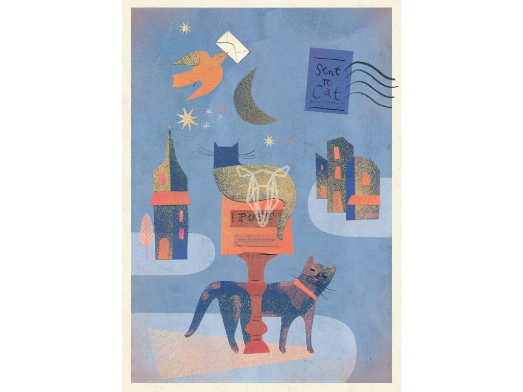 Koty i skrzynka pocztowa Marianna Sztyma