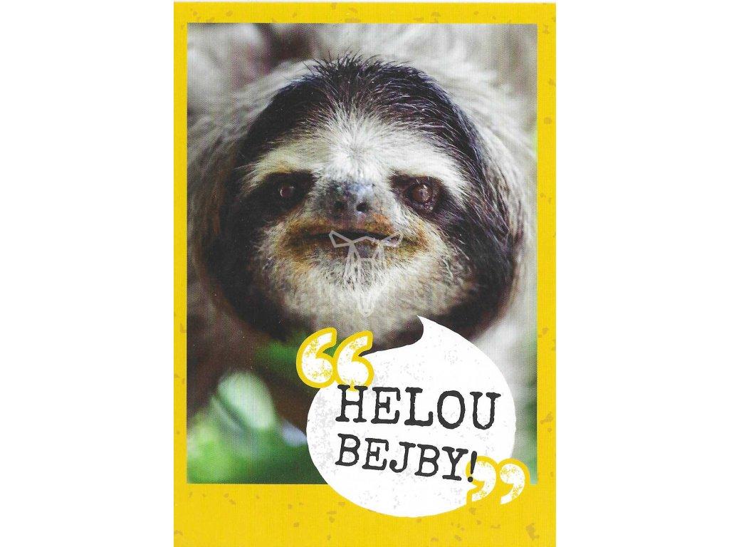 13214 2 pohlednice lenochod helou bejby
