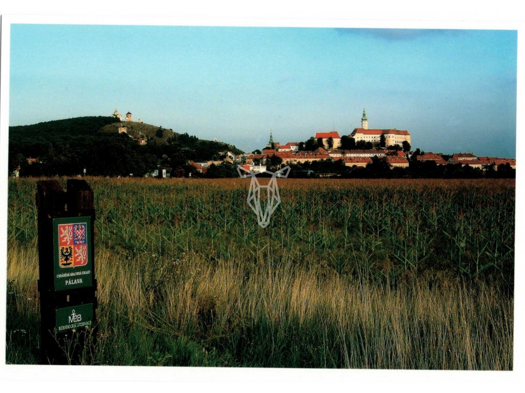 1163 pohlednice mikulov a chko palava