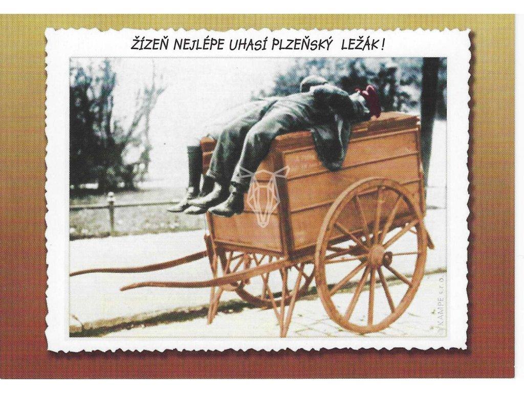 14339 2 pohlednice plzensky lezak