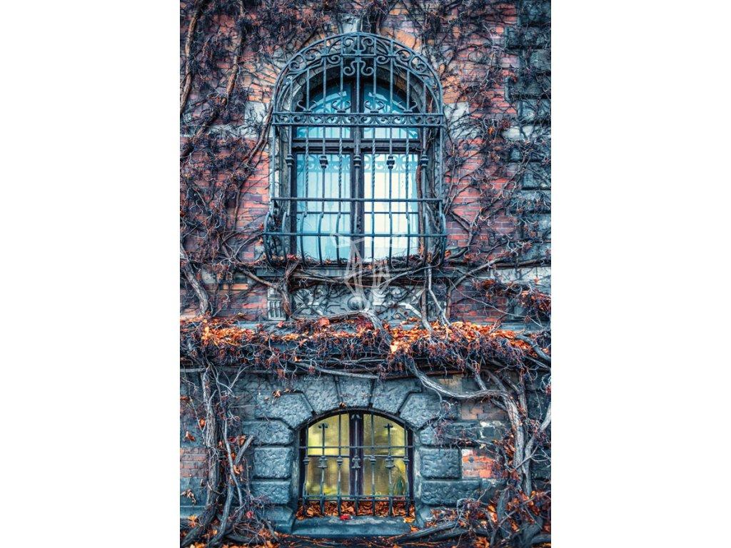 Jesienne okna Muzeum Narodowego we Wroclawiu