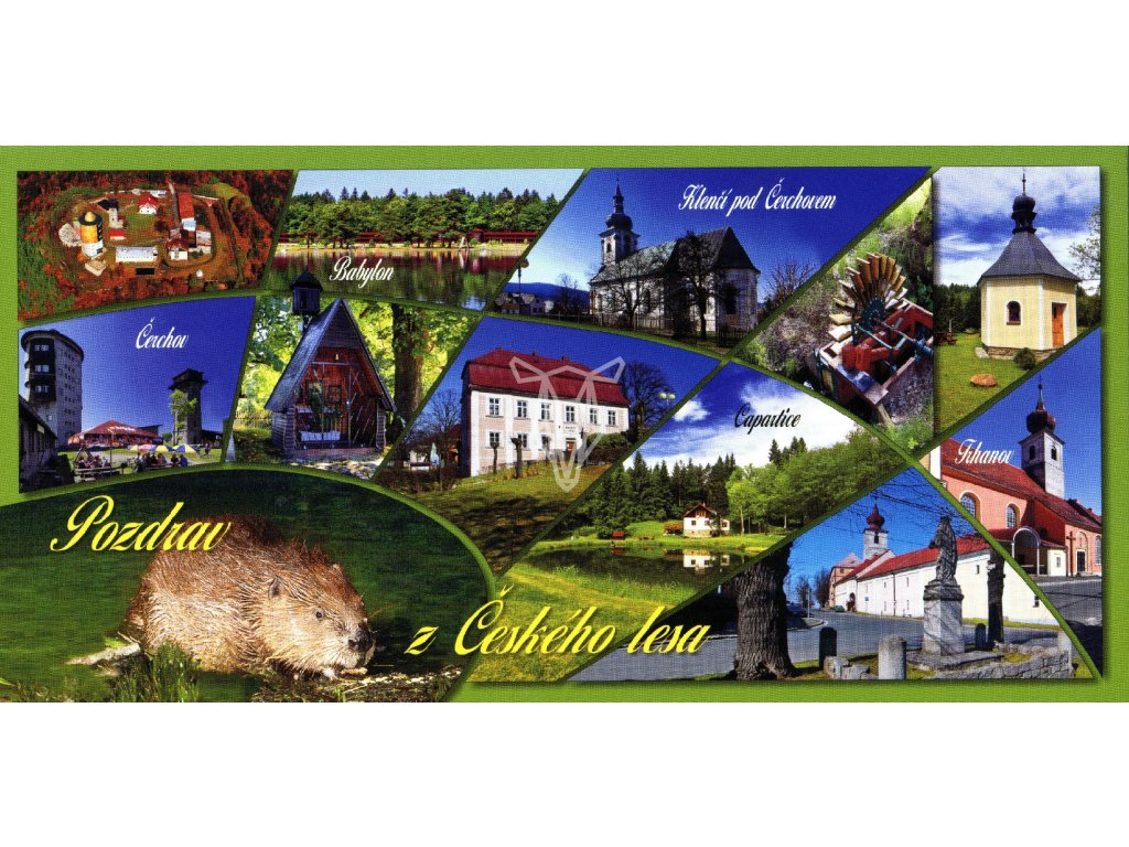 104 pohlednice pozdrav z ceskeho lesa