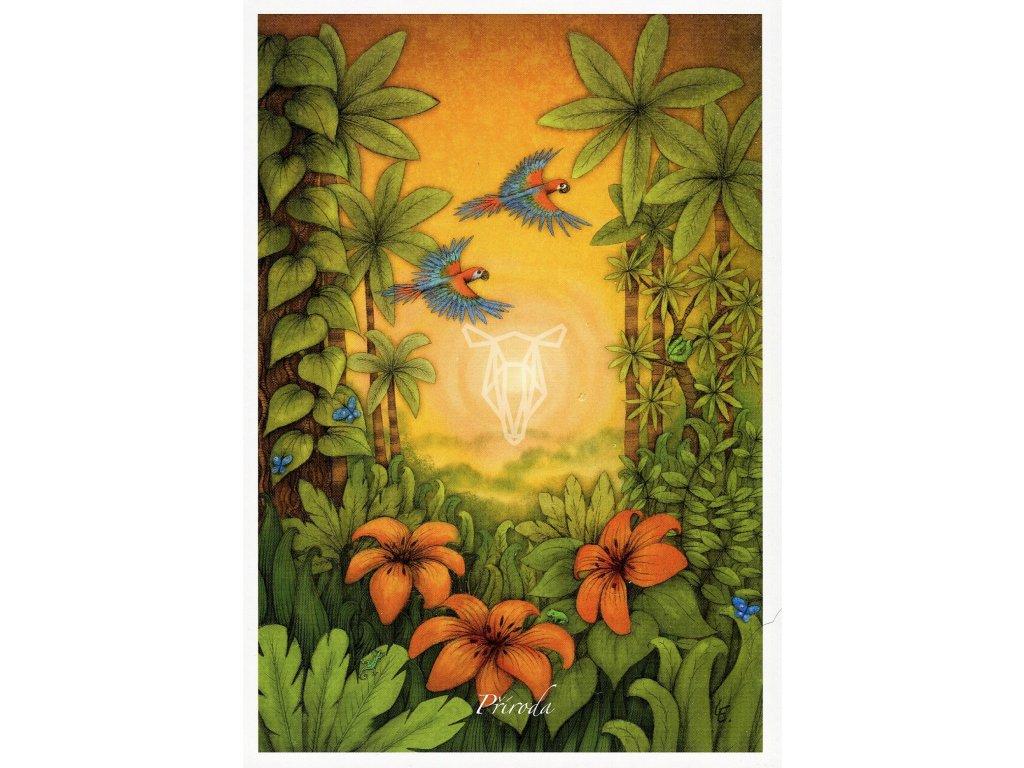 8651 2 pohlednice priroda