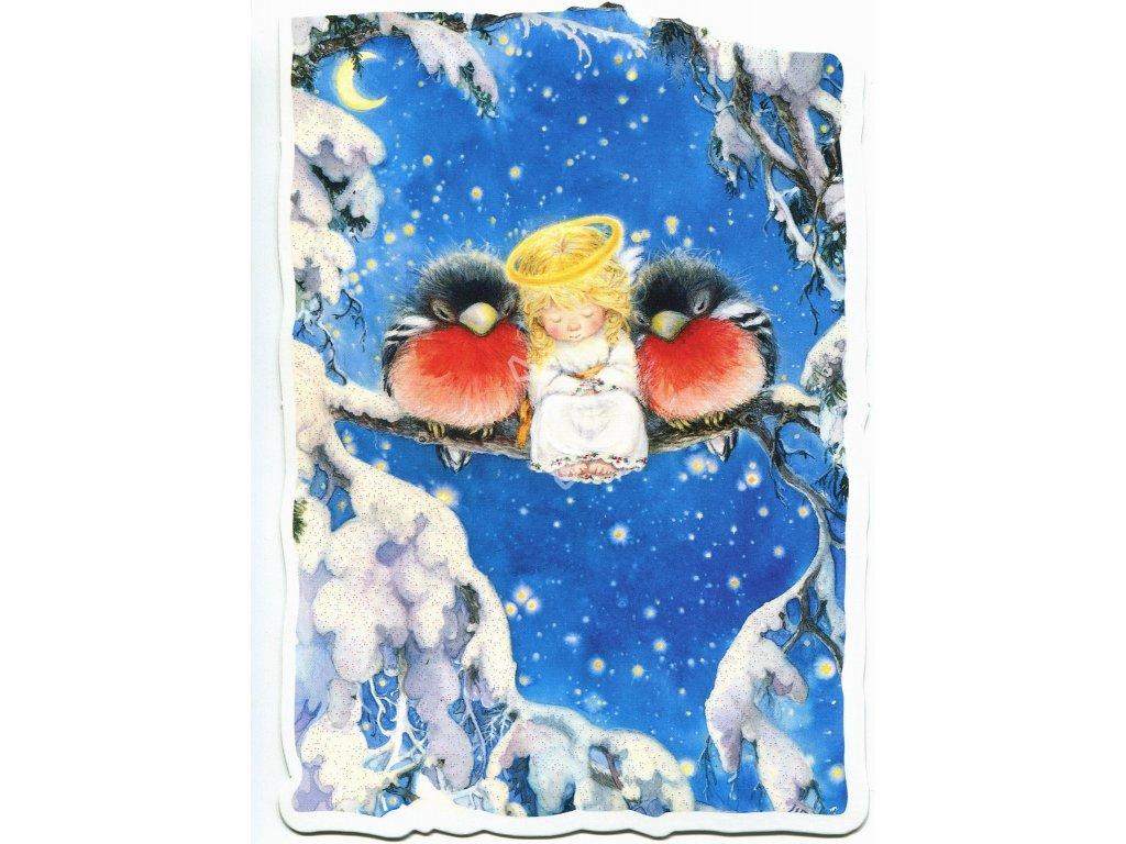 689 pohlednice ptacci a andel s glitry