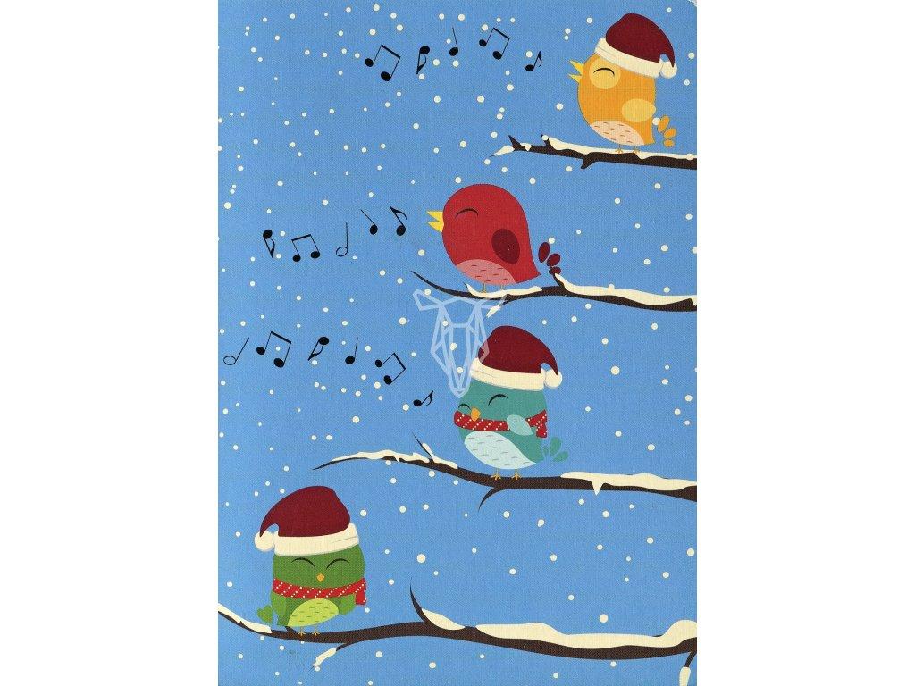 278 pohlednice ptacci v zime