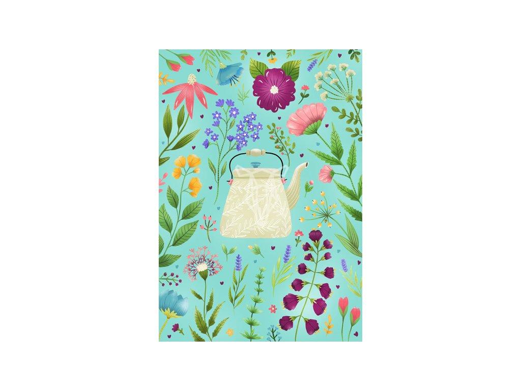 Pohled kytky modry