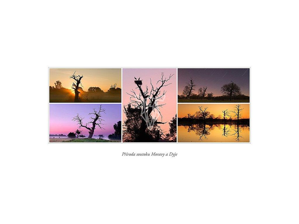 383 pohlednice soutok moravy a dyje pohansko cerne louky siroka