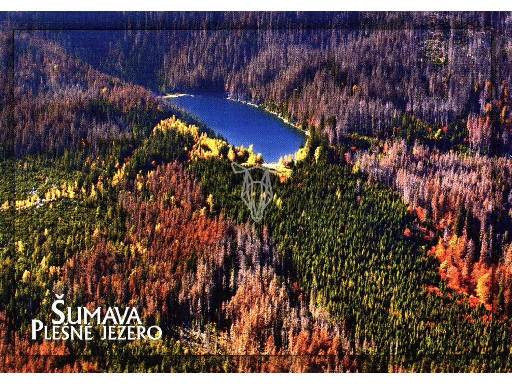 80 pohlednice sumava plesne jezero