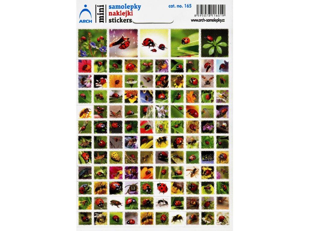 3083 1 mini samolepky slunecka sedmitecna hmyz 11 5 x 17 cm