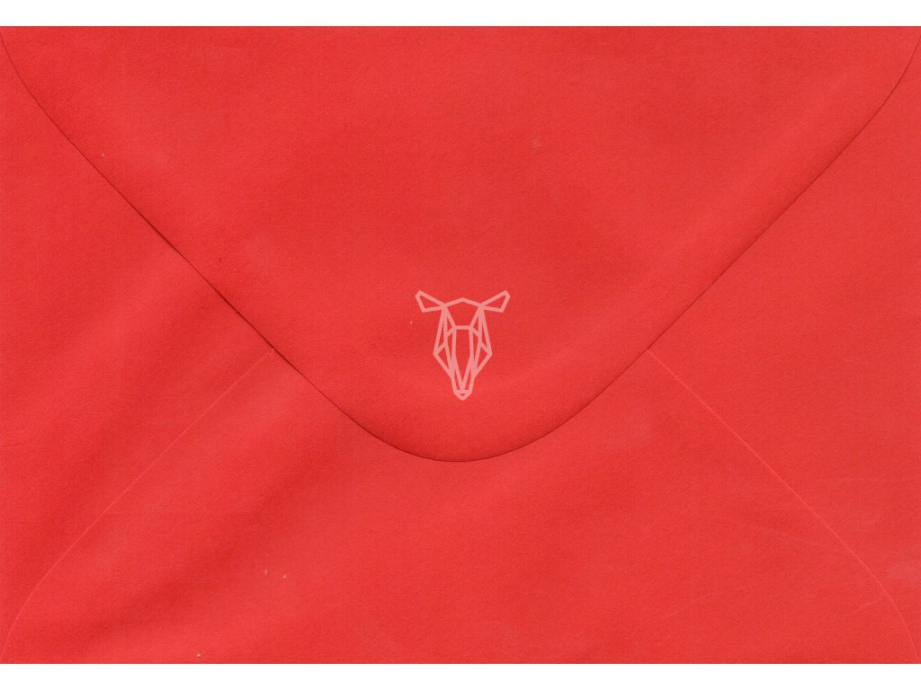 569 obalka cervena c6
