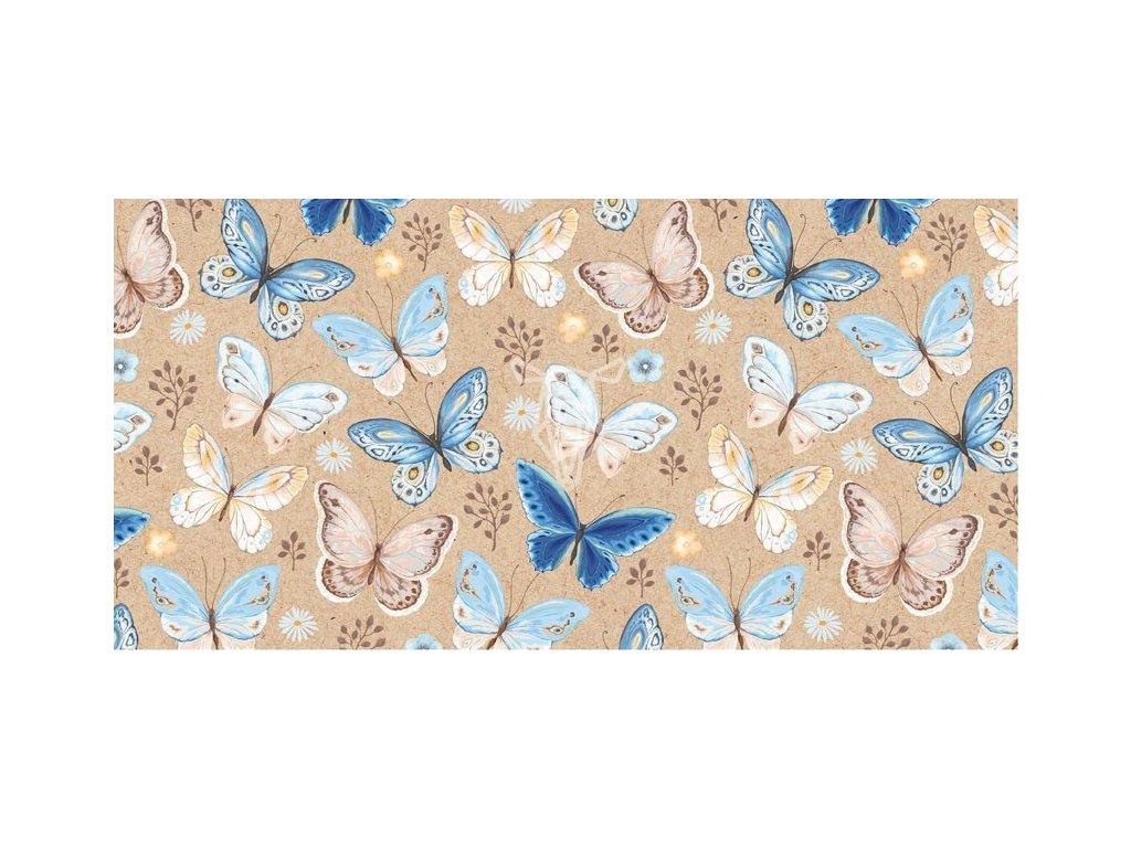 13280 1 obalka dl motylci