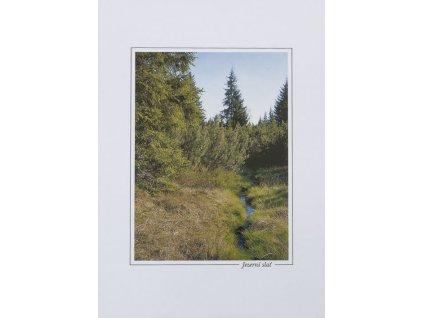 15110 3 pohlednice jezerni slat
