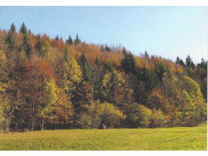 podzimni barvy