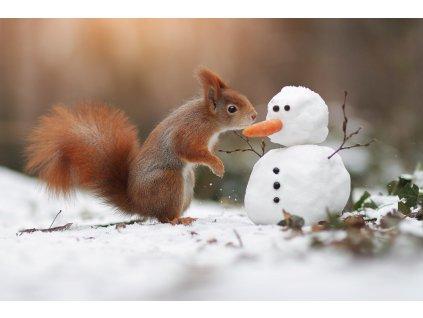 15368 3 pohlednice veverka a snehulak