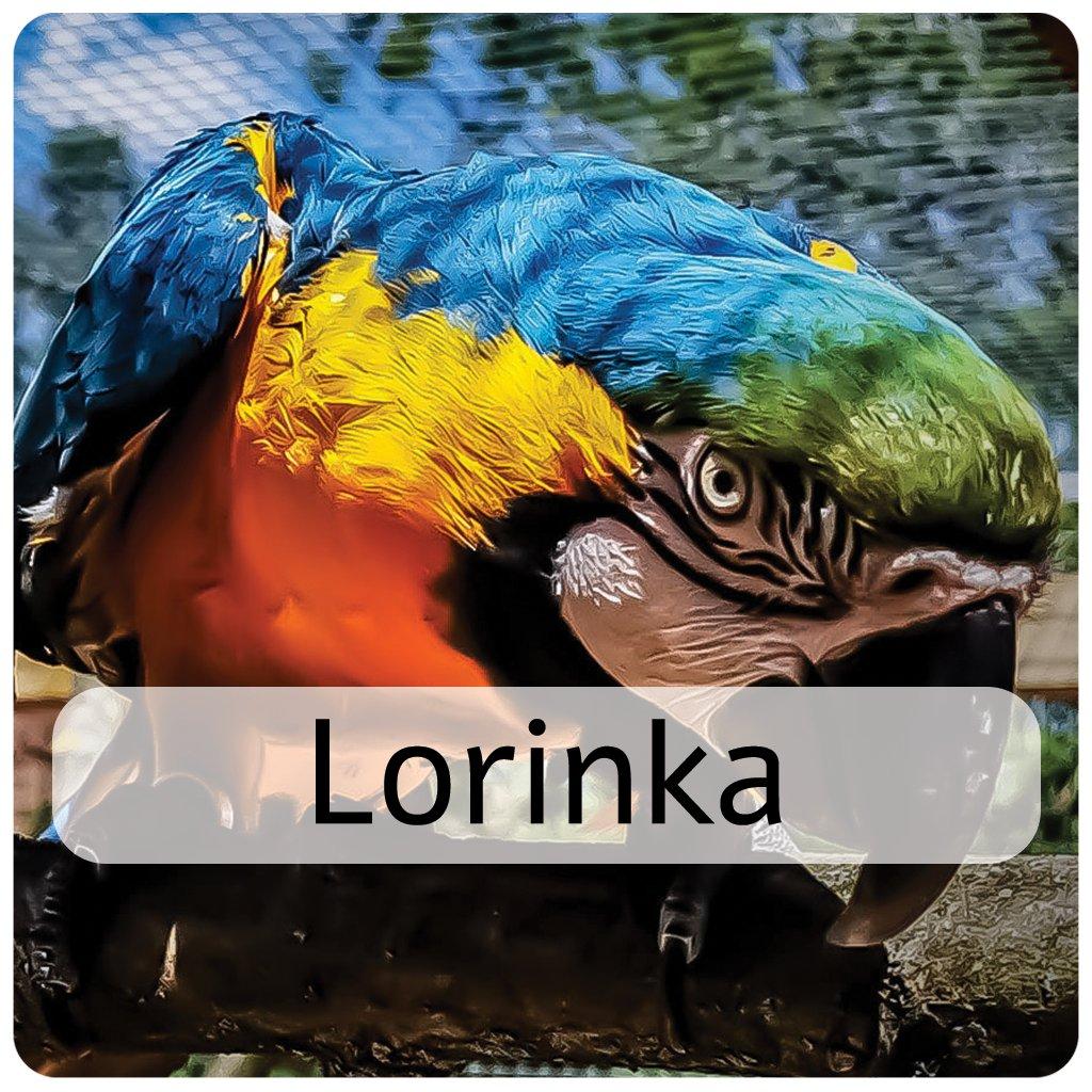 lorinka