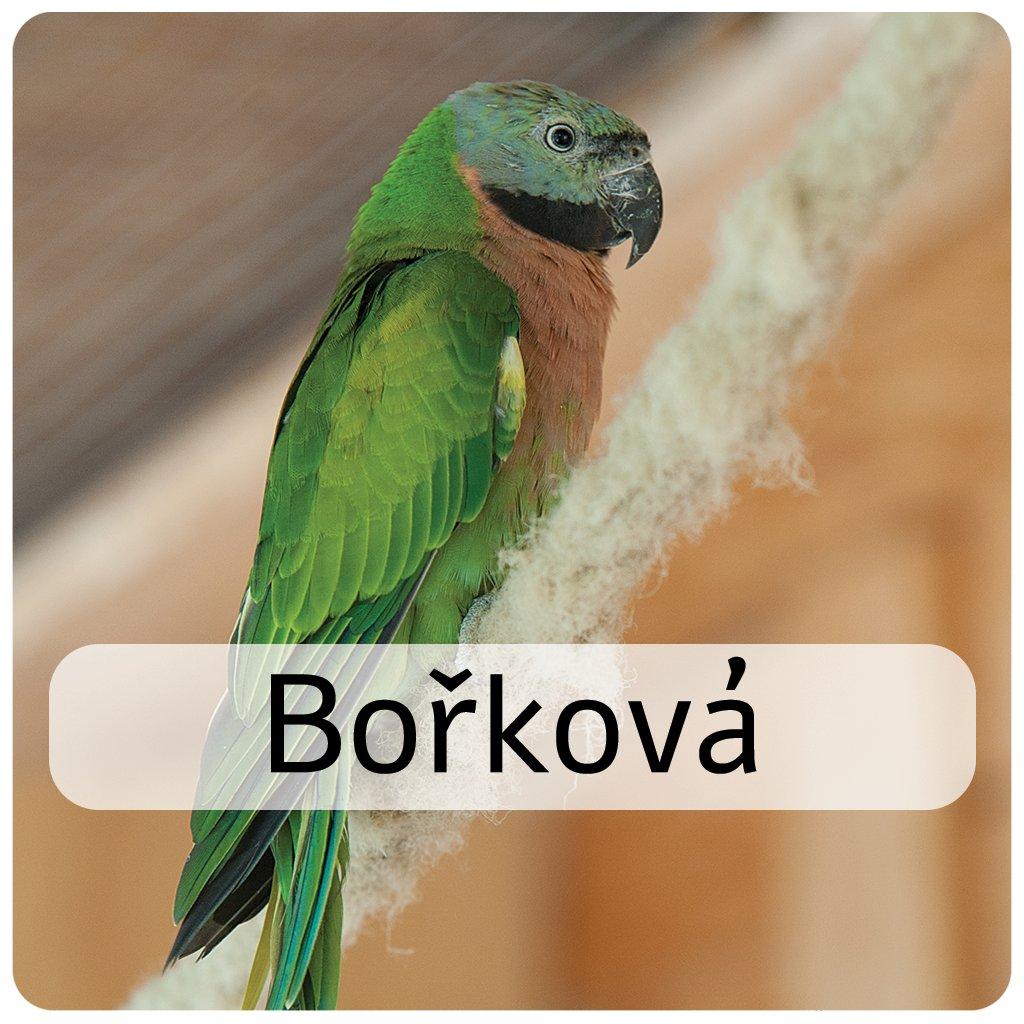 bořková