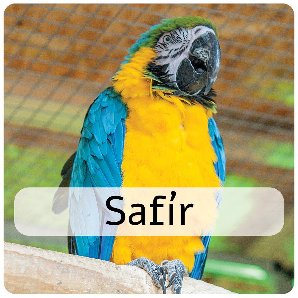 safír