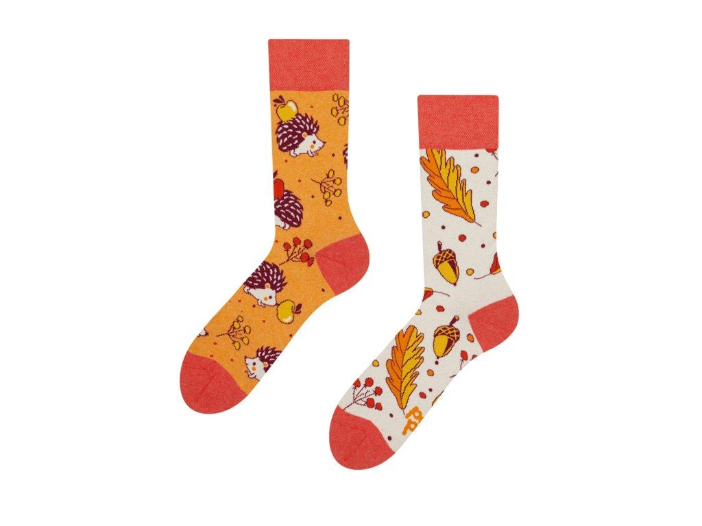 Veselé eko ponožky Jesenný ježko od firmy Good Mood