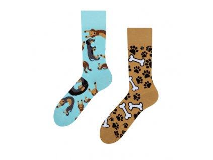 Veselé ponožky Jazvečík