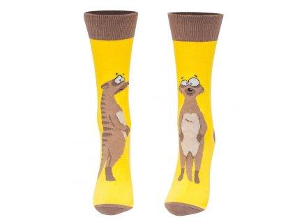 Veselé ponožky surikata