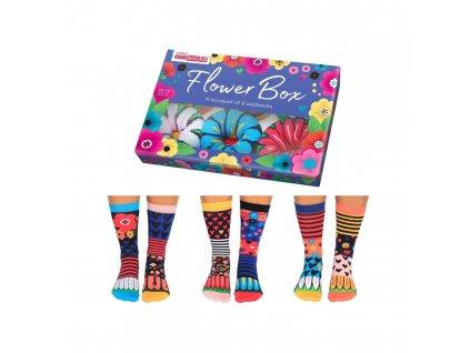 Veselé ponožky Flower Box veľ.: 37-42